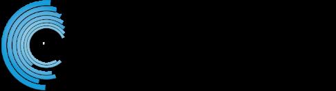 DS_logo copy